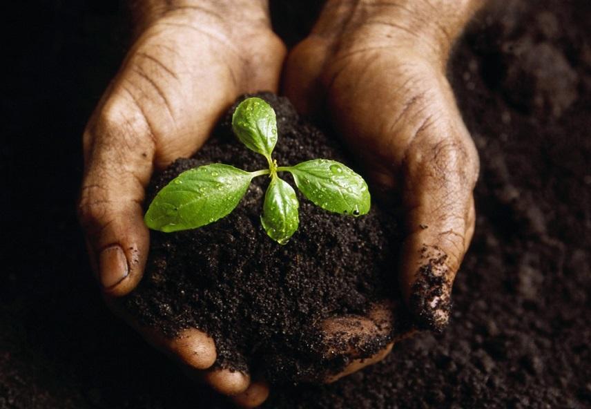 1 Corinthiens 10:23 Tout est permis, mais tout n'aide pas à grandir dans la foi