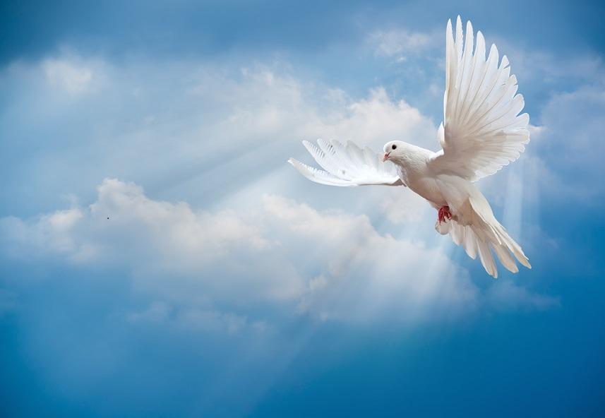Remplis-moi de Ton Saint-Esprit afin que je vive dans l'esprit