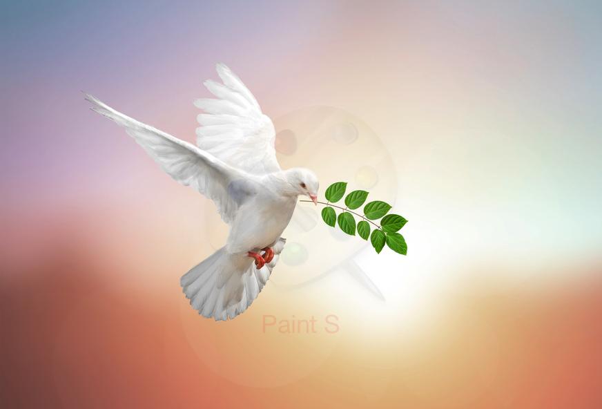Thématique : les versets de la Bible sur le SAINT-ESPRIT