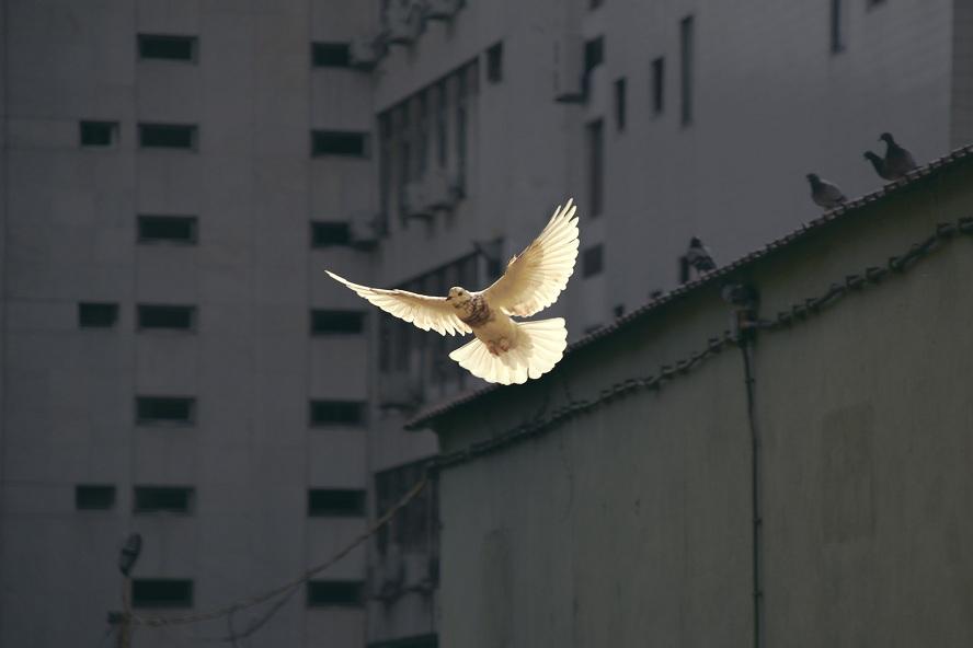 Qui est le Saint-Esprit et à quoi sert-Il ?