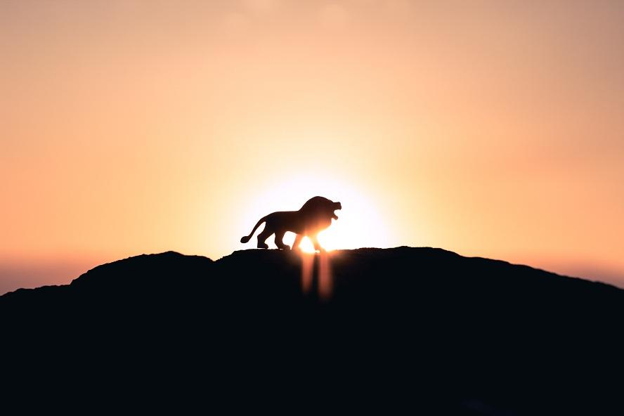 Qui est Jésus : le Lion de la tribu de Juda !