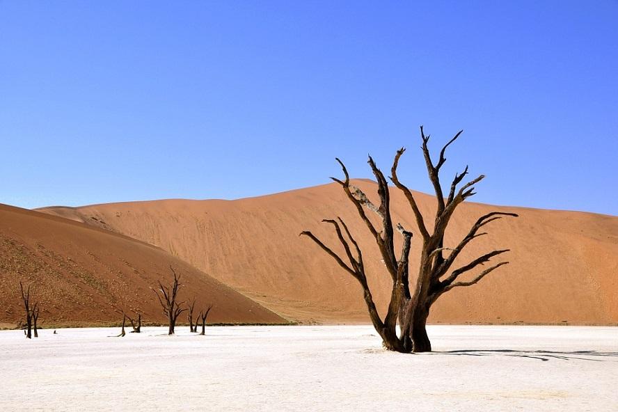 Le désert du ministère