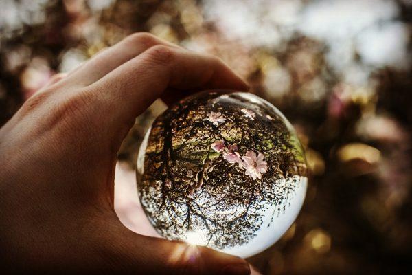 Comment garder une conscience pure face aux dérives de ce monde ?