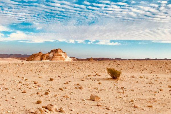 Le désert qu'est-ce que c'est ? Pourquoi le désert ?